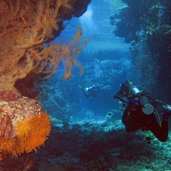 United Divers Egypt Safaga Croisiere St-John's