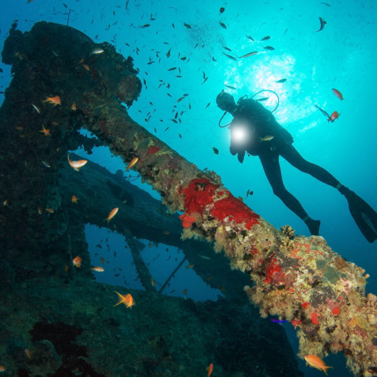 United Divers Egypt Safaga Croisiere Vestiges du Nord