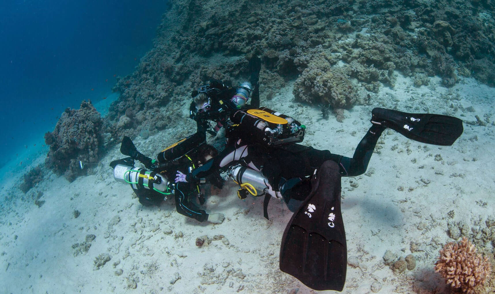 United Divers Egypt Safaga Formations Instructeur