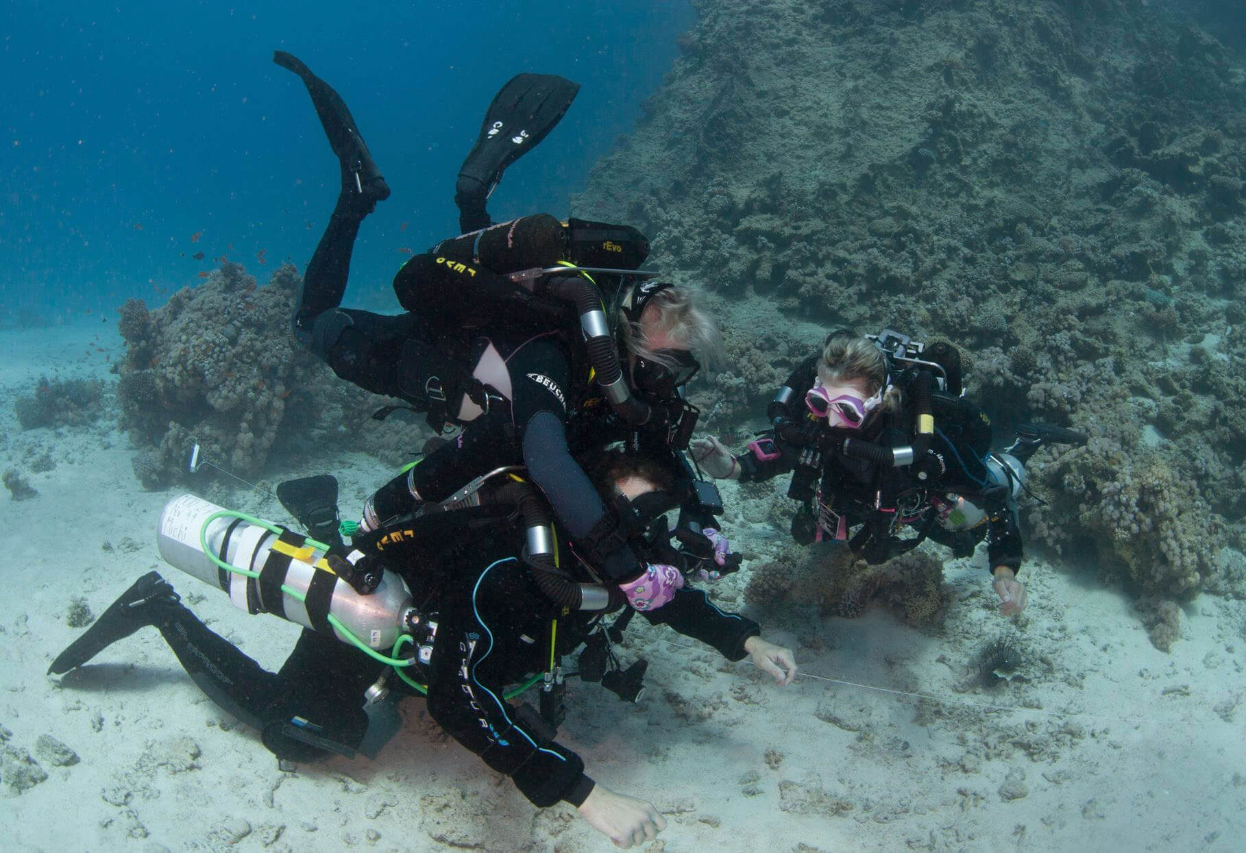 United Divers Egypt Safaga Formation Instructeur