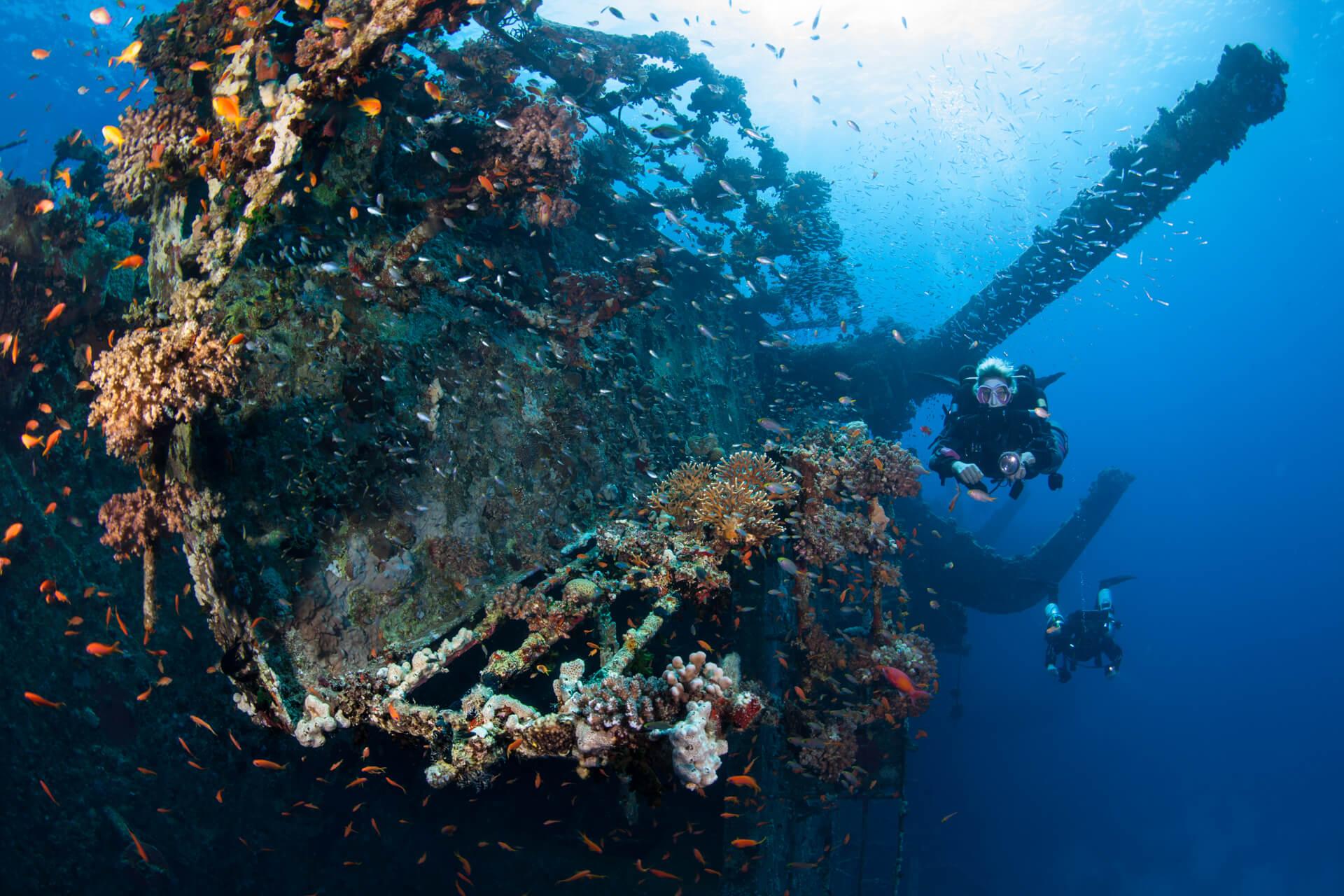 United Divers Egypt Safaga site de plongée Salem Express