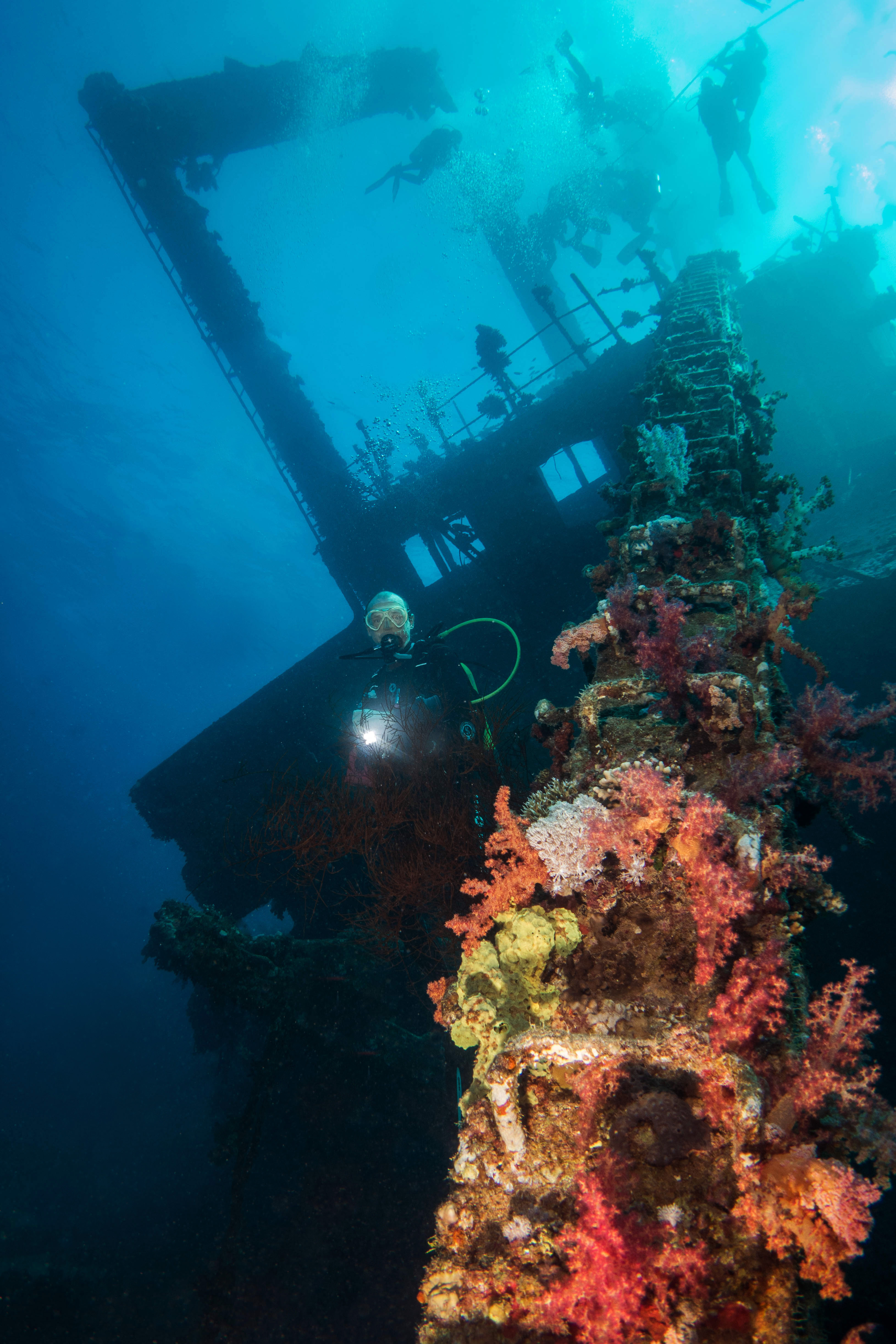 United Divers Egypt takes you on a diving safari Relics of the North